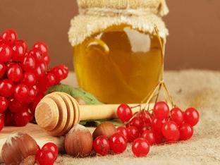Калина с медом. Какая польза и какие противопоказания