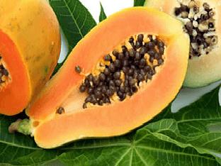 Чем полезна папайя для организма
