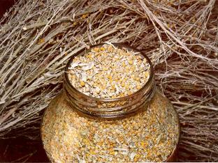 Цитварное семя от паразитов: применение