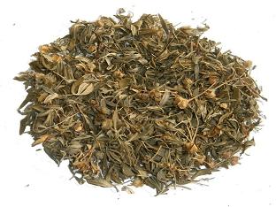 Курильский чай — чем полезен, как заваривать