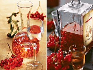 Рецепт домашней настойки из красной рябины