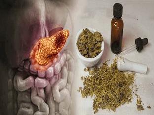Как применять прополис для поджелудочной железы