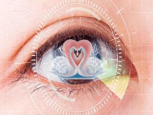 Любовная совместимость по цвету глаз