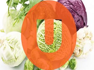 Насколько важен витамин U для здоровья